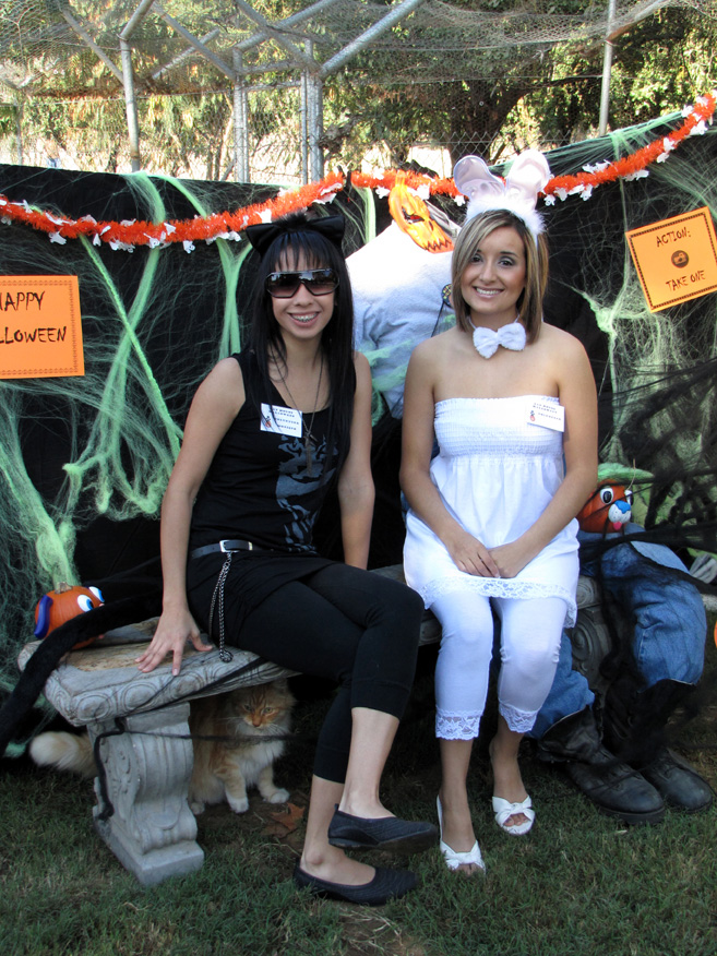 Halloween Open House - Click to enlarge
