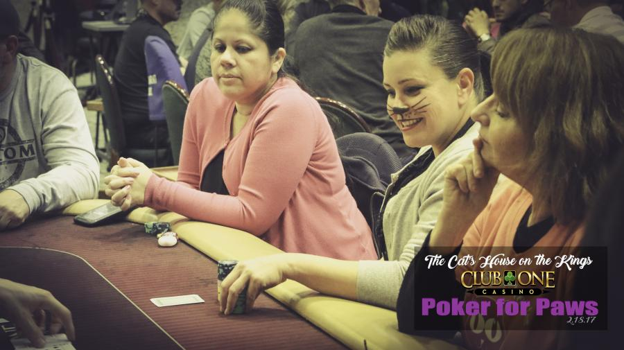 Poker for Paws - Click to enlarge