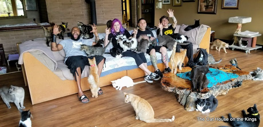 Special Cat Team Visit - Click to enlarge