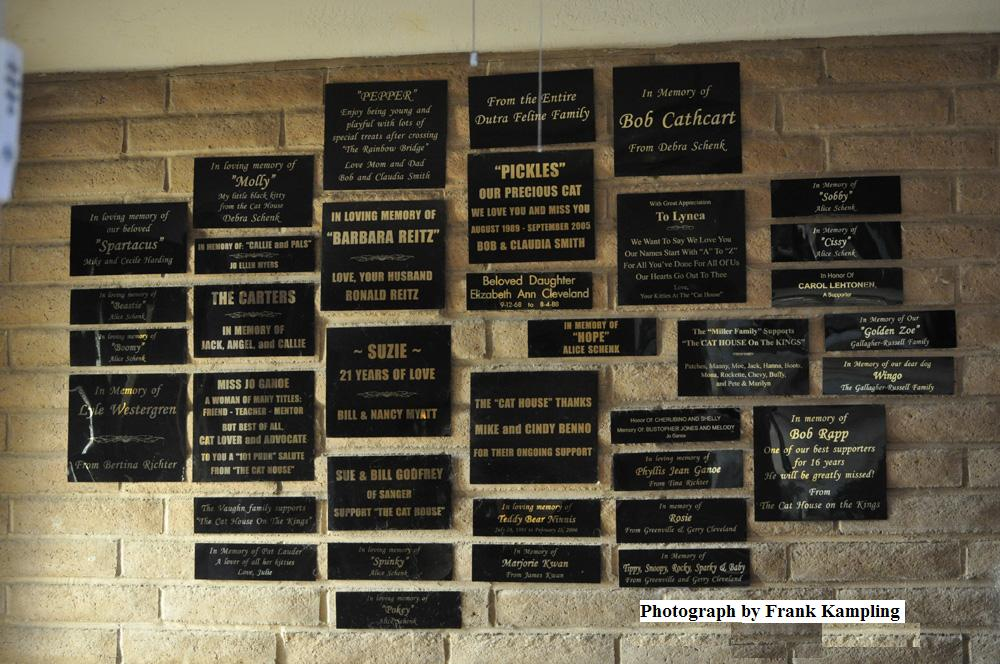 Dedication Wall - Click to enlarge