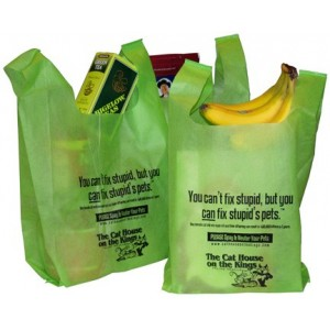 "Reusable ""Can't Fix Stupid"" Bag"